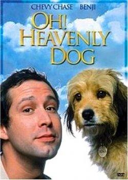 О, божественный пес! / Oh Heavenly Dog (1980) DVDRip (RUS + ENG)