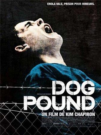 Собачий загон / Dog Pound (2010) HDRip