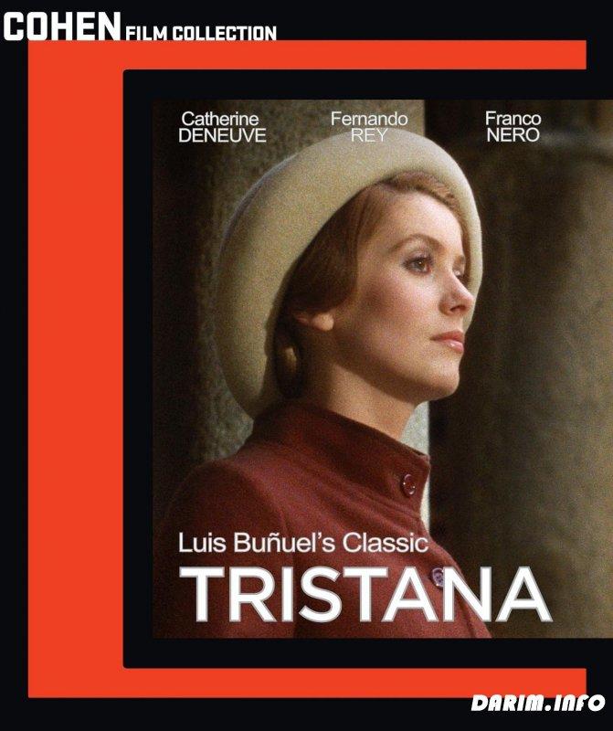 thesis spanish film