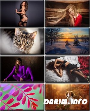 LIFEstyle News MiXture Images. Wallpapers Part (1177)