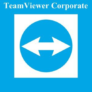 TeamViewer Corporate 12.0.78716 Final