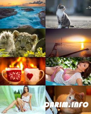 Wallpapers Mix №606