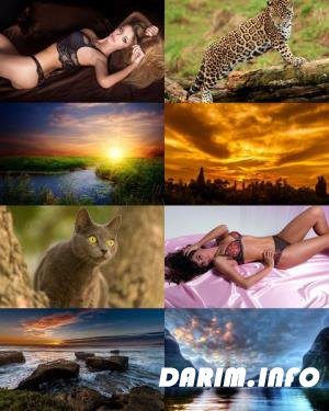 Wallpapers Mix №608