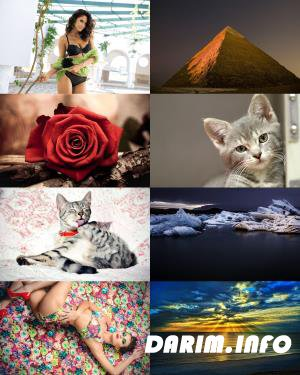 Wallpapers Mix №617