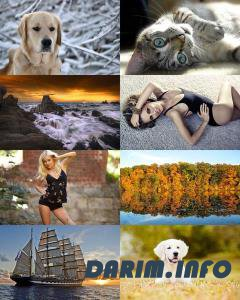 Wallpapers Mix №695
