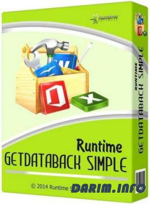Runtime GetDataBack Simple 5.50