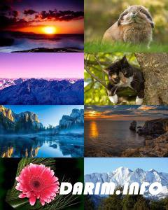 Wallpapers Mix №792