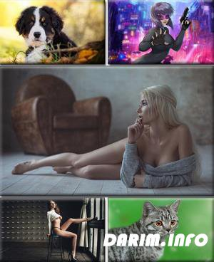 LIFEstyle News MiXture Images. Wallpapers Part (1513)