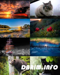 Wallpapers Mix №794