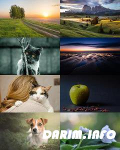 Wallpapers Mix №841